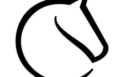 Tournois en ligne UVE